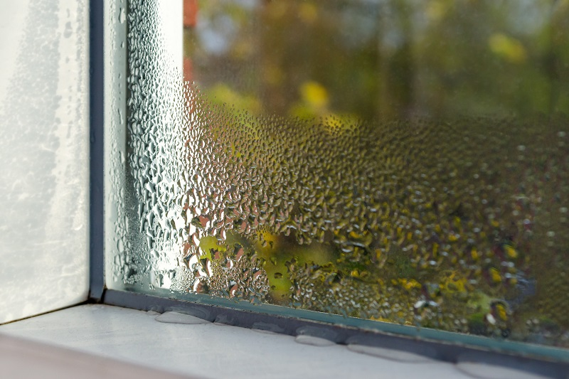 What Causes Condensation on Windows?